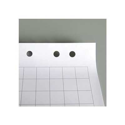 Бумага для флипчарта Axent 10 листов (клетка)