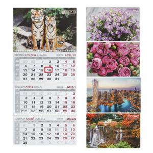 Календарь настенный квартальный на 2021г. ( 3 пружины)