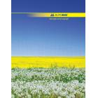Книга обліку А4 96 аркушів клітинка