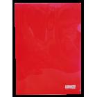 Папка-уголок 120мкм А4 Buromax, красная