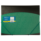 Папка на резинках А4 пластиковая BM.3910-04, зеленая