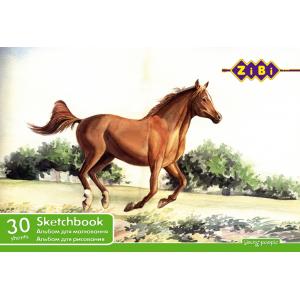 Альбом для рисования 30 листов ZiBi (ZB.1441)